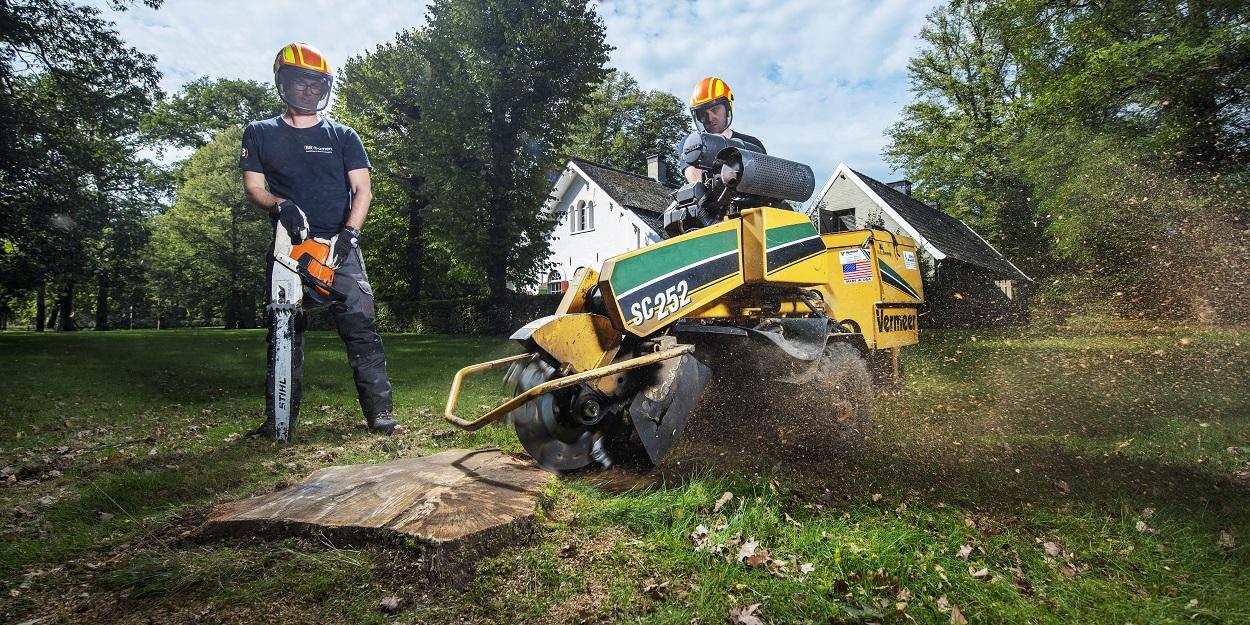 Bomenspecialist (BB) bomen is bezig met het verwijderen van een boomstronk.