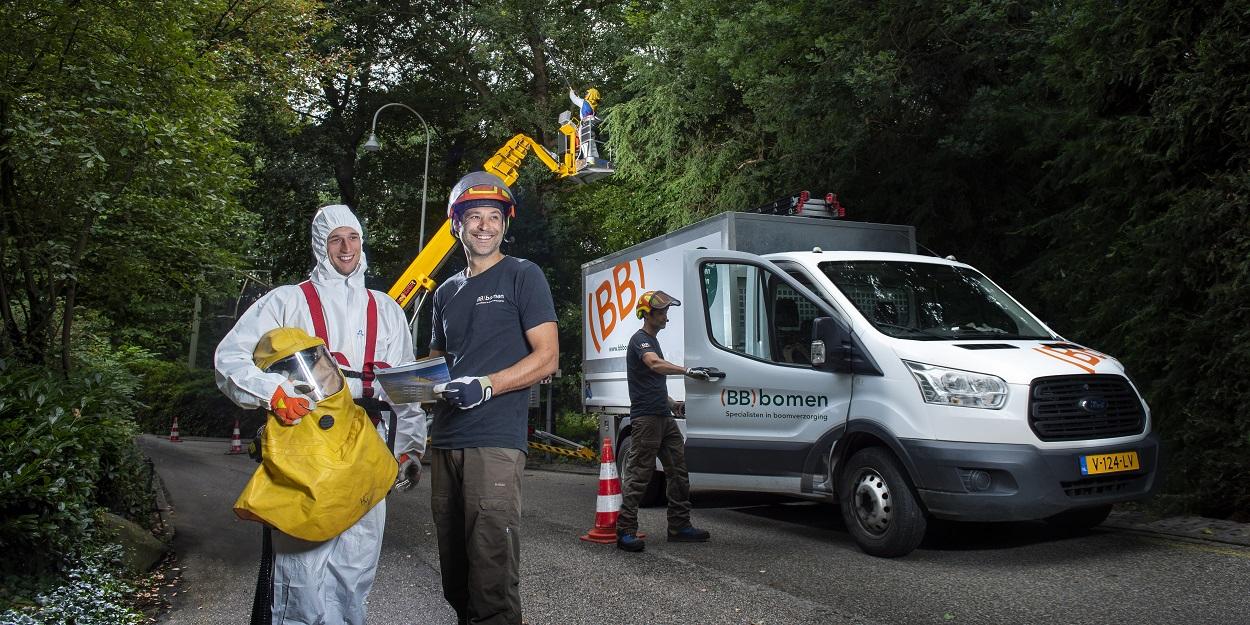 Eikenprocessierups bestrijden. Specialisten in boomverzorging (BB)bomen. Arnhem, Apeldoorn, Nijmegen, Wageningen.