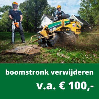 boomstronk verwijderen kosten BB Bomen
