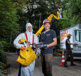 Eikenprocessierups-verwijderen-Apeldoorn-Arnhem-Wageningen