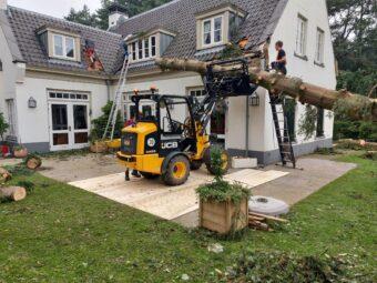 Omgewaaide boom op huis