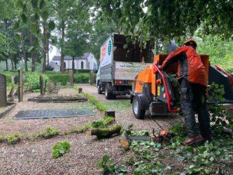 Bomenspecialist BB bomen aan het werk in Hoenderloo